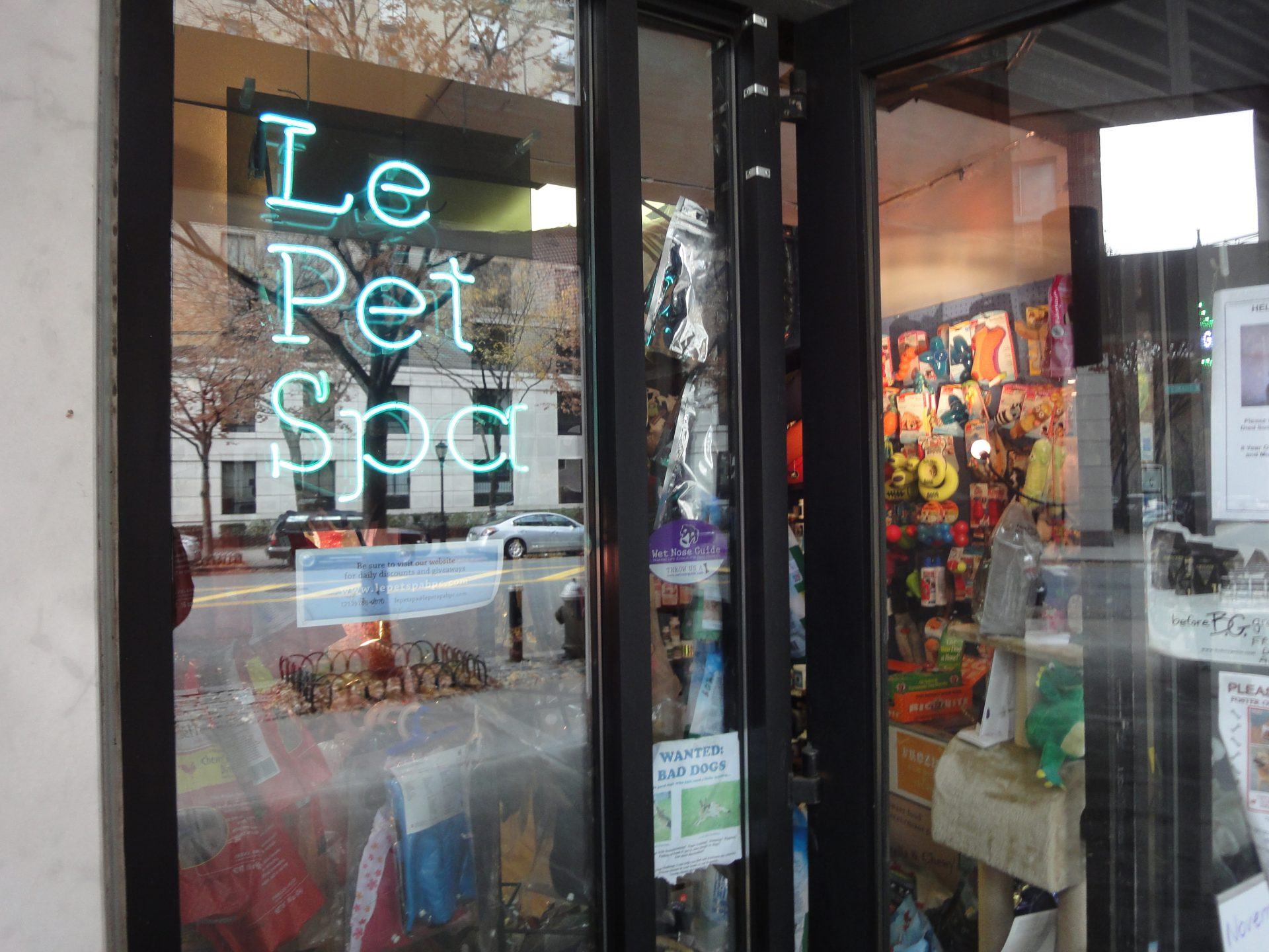 Barclay Recommends: Le Pet Spa in Battery Park City