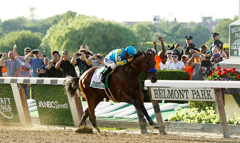 Belmont Stakes 2015: An Experience for the History Books