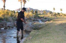mediocre golf