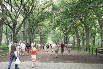 The_Mall_&_Literary_Walk,_Central_Park,_Manhattan,_NYC