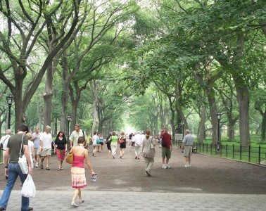 The_Mall_&_Literary_Walk,_Central_Park,_Manhattan,_NYC