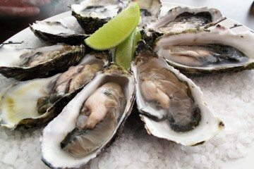Oysters - Downtown Magazine