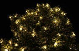 christmas-232194_640
