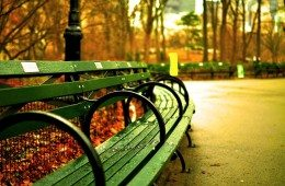 central-park-535645_960_720