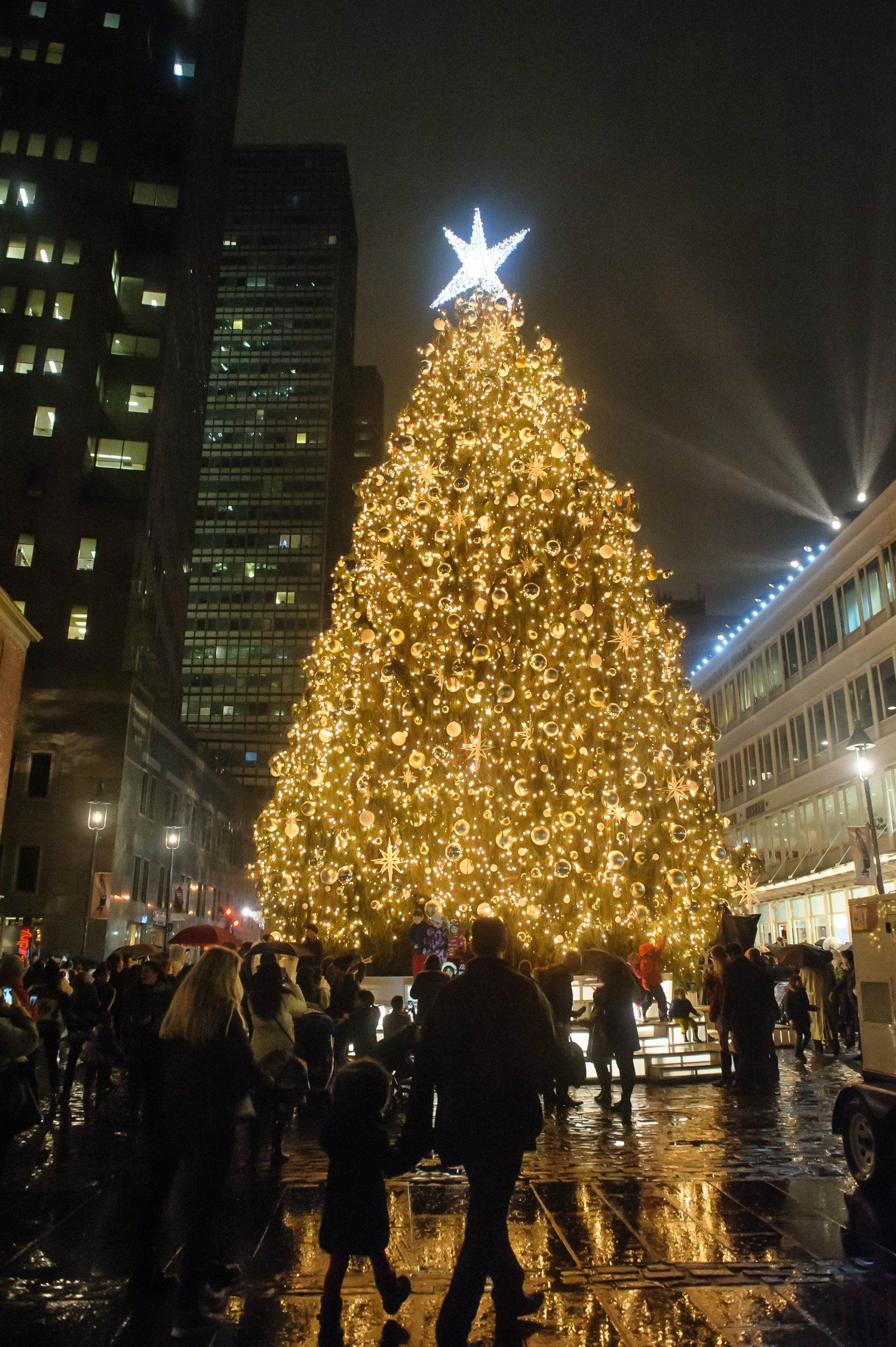 Seaport_TreeLighting_2015_jkratochvil_65