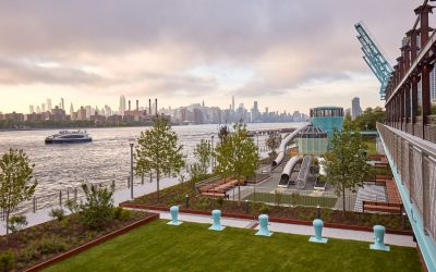 Domino Park: The Journey from Sugar Refinery to Public Park