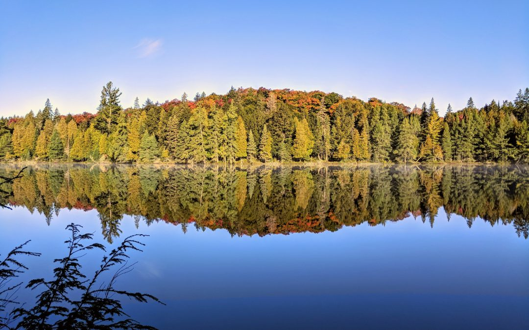6 Days Backpacking With a Stranger in the Algonquin Provincial Park