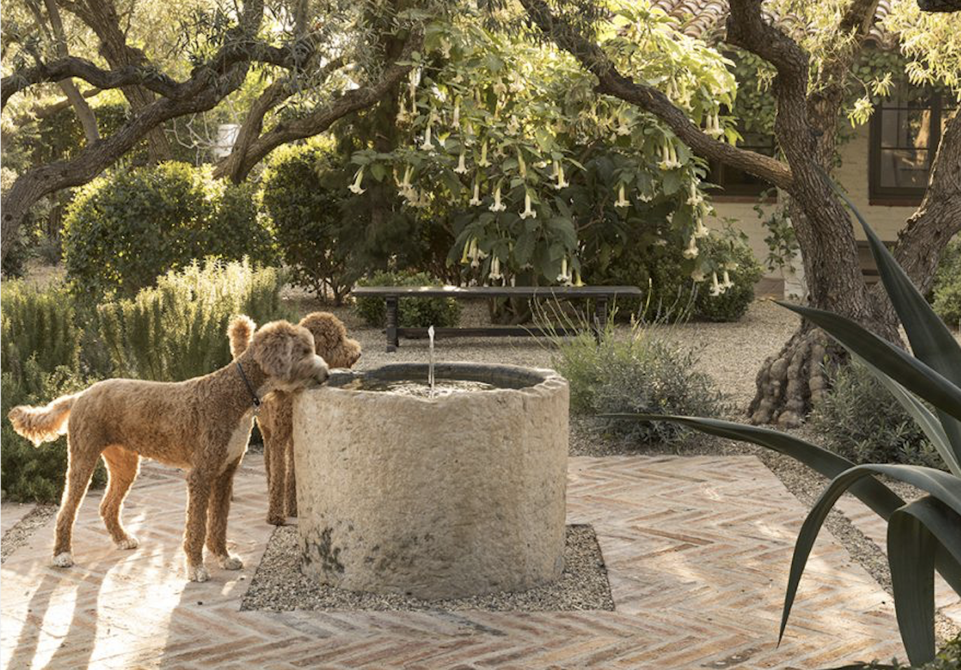 Gorgeous Gardens Spill Across the Pages of Landscape Designer Scott Shrader's First Book