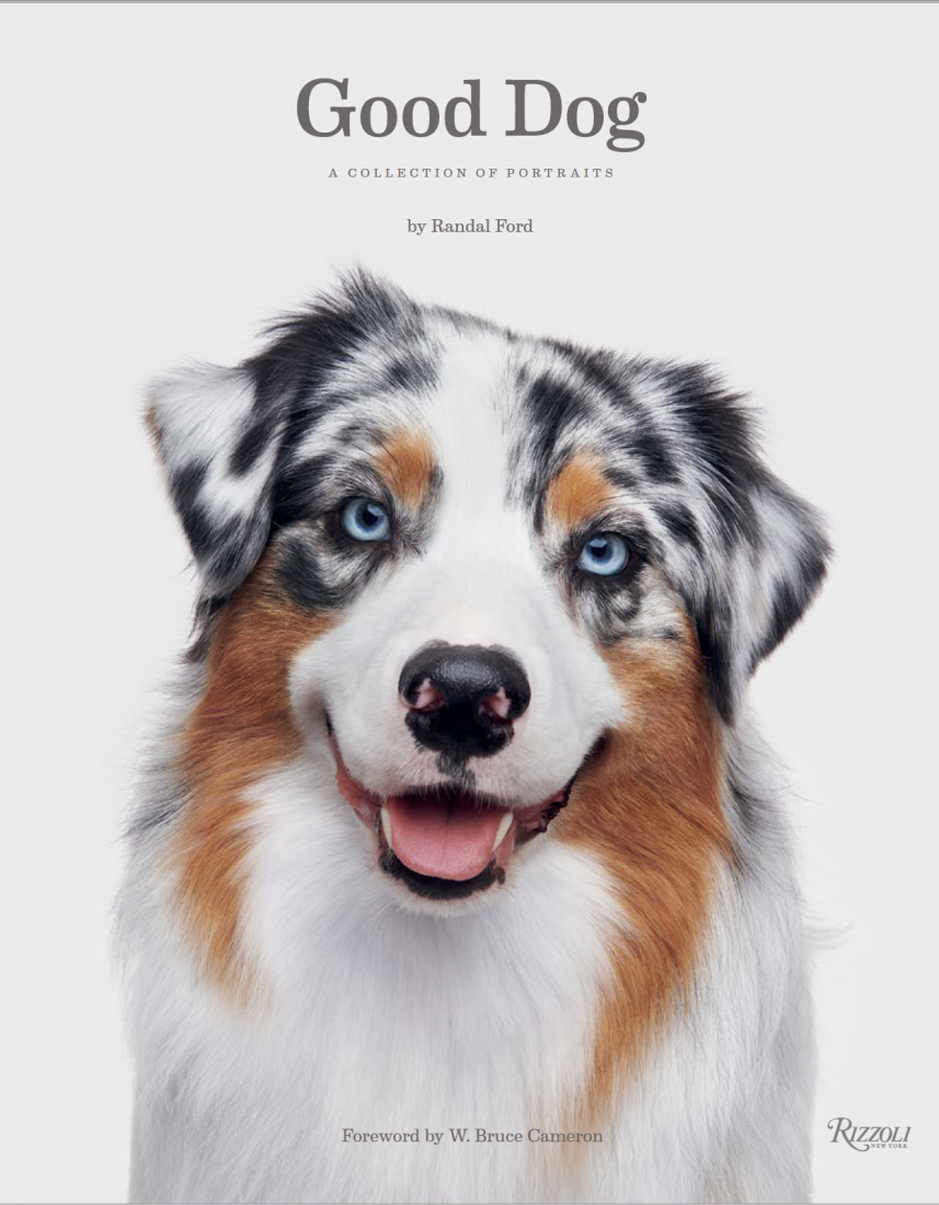 """Randal Ford's New Book, """"Good Dog"""" Caters to Dog Lovers"""